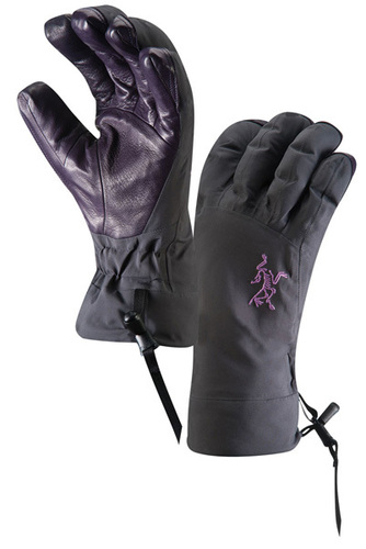 Arc'teryx Beta AR Glove  Sci Alpinismo