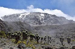 Kilimangiaro in Tanzania, la montagna più alta dell'Africa