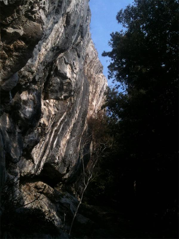 Predore, Settore Foresto, Francesco Scazzoli
