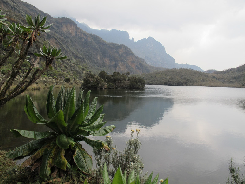 Ruwenzori: il Central Circuit Trail, Davide Orlandi