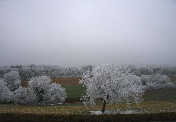 Paesaggio d'inverno, arch. Manolo