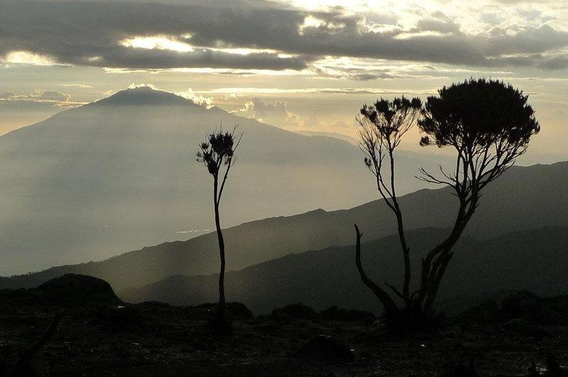 Tramonto sul Mt Meru 4562m da Shira Camp, Nicola Noè