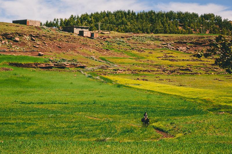 Aprile 2013: primavera in Marocco, Franz Walter