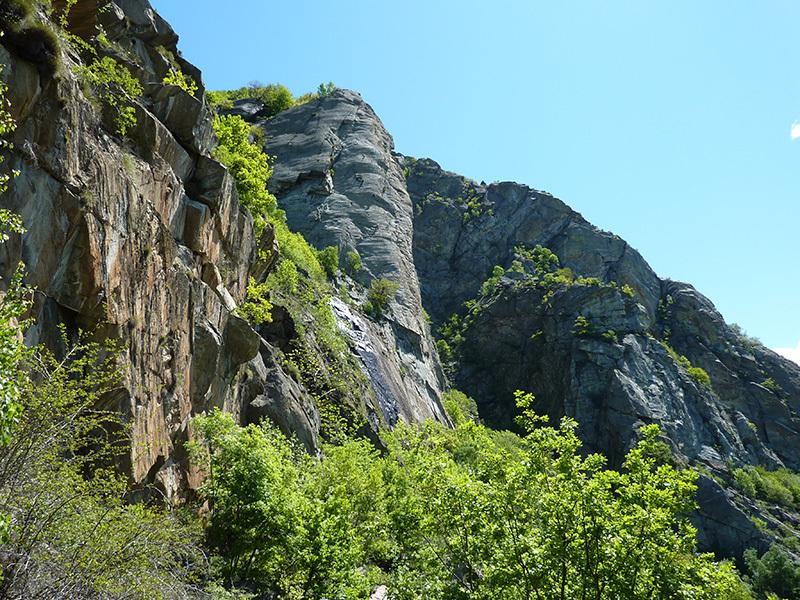 Pilasto Lomasti: un monumento della natura, archivio Ivo Ferrari