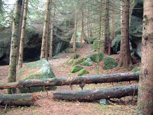 Foresta dei Bagni di Masino, Melloblocco