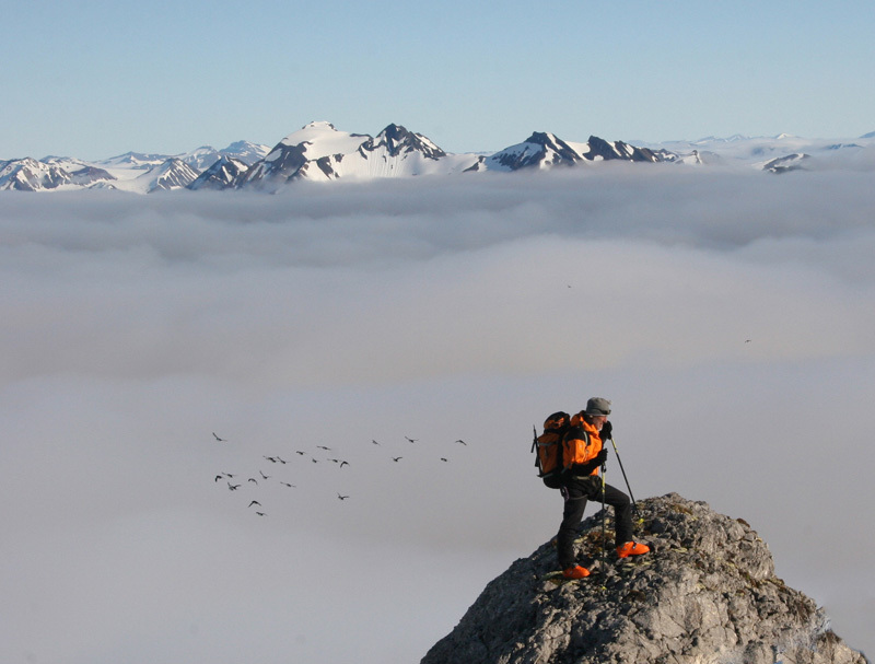 Svalbard: sci alpinismo a Gashamna - Hornsund, Carlo Gabasio in vetta, Paolo Falco