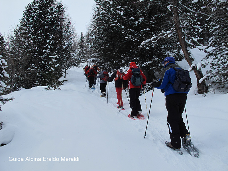 Snowshoeing at Arnoga, Val Viola, Alta Valtellina, Eraldo Meraldi