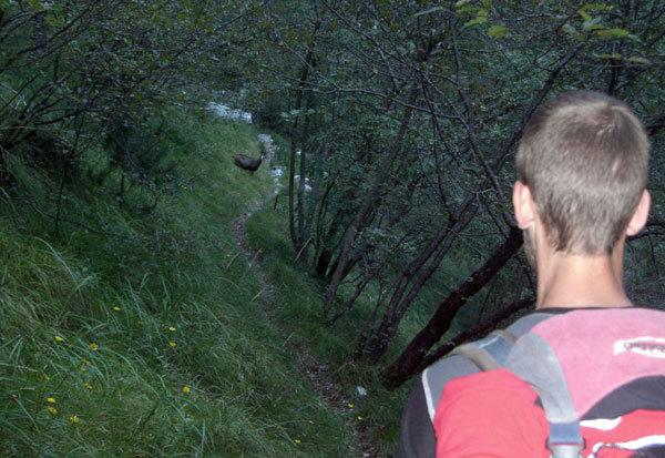 Incontri in Val de Piero, Beppe Ballico