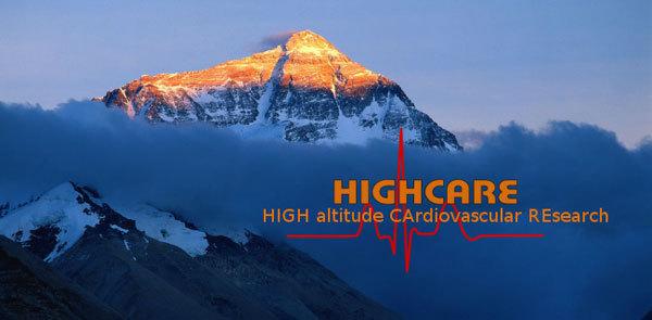 , www.highcare2008.eu