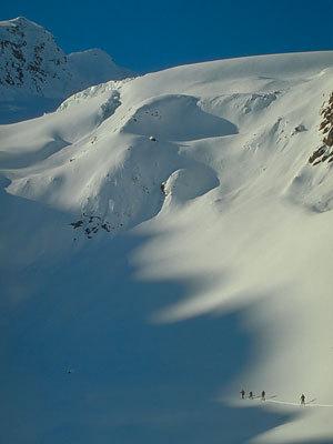Gruppo di scialpinisti salgono verso Cima Venezia, Francesco Piardi