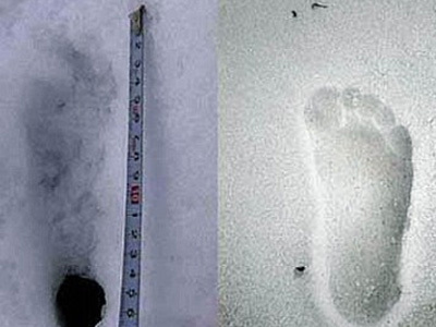 A photo taken by the Japanese expedition. On the left the presumed Yeti footprint, compared to a human footprint on the right., www.everest.co.jp/yeti2008
