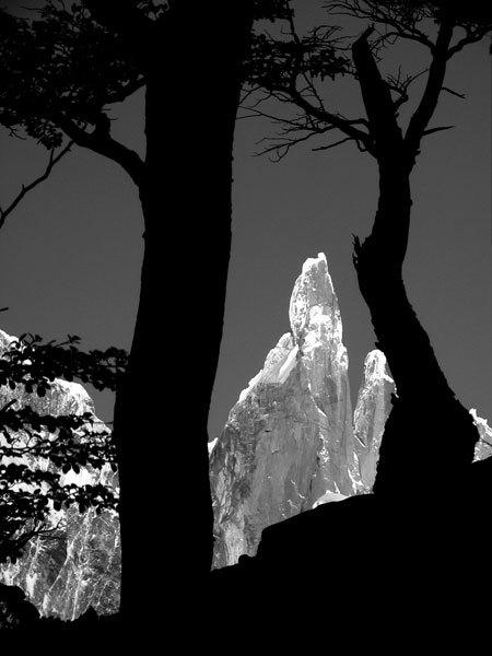 Cerro Torre, Marcello Cominetti