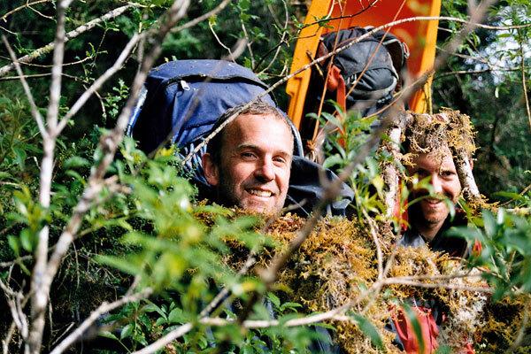 Nella foresta pluviale, Marcello Cominetti