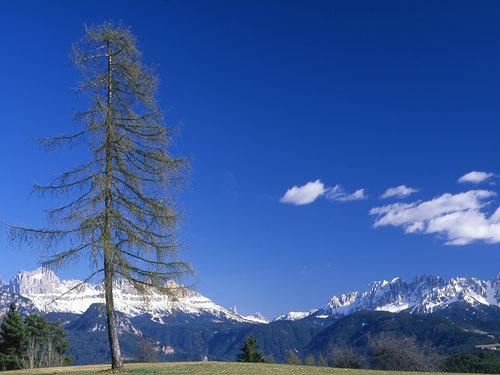 Altopiano del Renon (Alto Adige), Nicholas Hobley