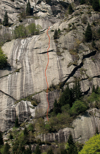 Mani di Fata on the smooth slabs of Alkekengi., Andrea Gaddi