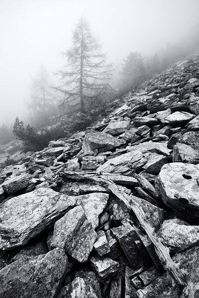 Vallone della Roussa-Val Chisone (TO), Dario Bonetto