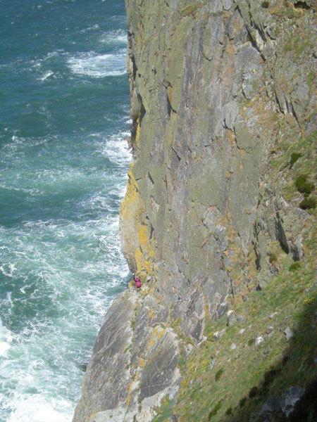 Sea Cliff Climbers, Andrea Giorda