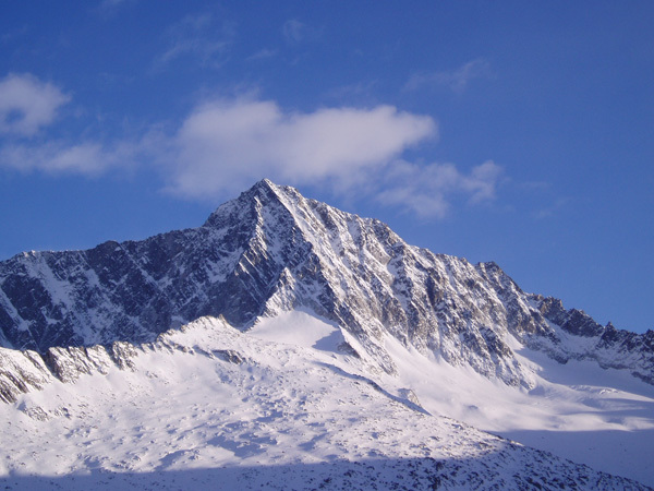 Monte Adamello, 3539m, Cain Olsen