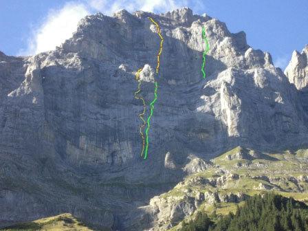 In verde Il tracciato di Infinite Jest, in giallo Coelophysis, archivio F. Palma, M. Della Bordella