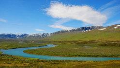 500 chilometri che si snodano sornioni oltre il Circolo Polare Artico, in un ambiente selvaggio...