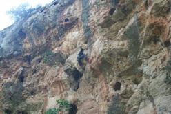 Dario Di Gabriele climbing Resting di dogana 7a+