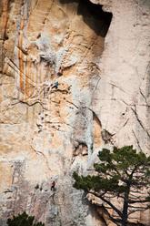 Barbara Zangerl su Delicatessen (8b, 120m), Bavella, Corsica