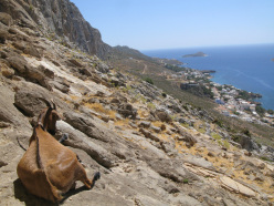 Relaxing on Kalymnos