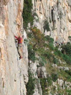 On the beautiful slab Recinto Ruspante.