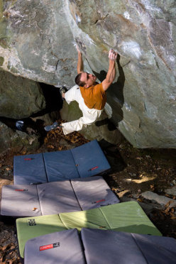 The evolution of free climbing