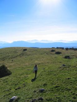 trekking sul Renon, Alpi Sarentine