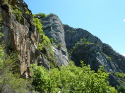 Pilasto Lomasti: un monumento della natura