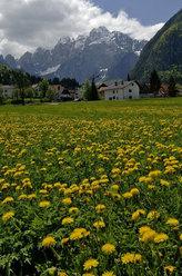 Valbruna e Jof Fuart versante Nord