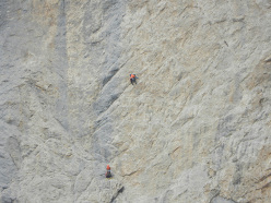 On pitch 4, 7c+