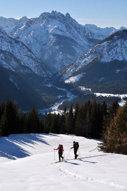 Scialpinismo in Val Visdende: Cima Manzon, all'uscita del bosco