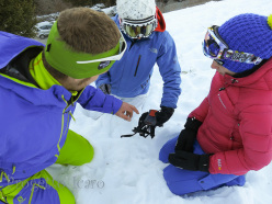 Youngsters are often better than adults at learning how to use avalanche transceivers.