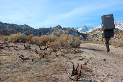 Boulder at Bishop, USA: verso Dale's Camp