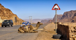 On the road to Wadi Rum