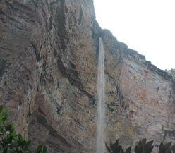 The 600m waterfall to the right of Amuríta, Amurí wall, Venezuela.