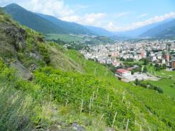 Vigneti sopra Sondrio, Valtellina