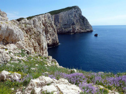 Spring view onto the crag Casarotto at Capo Caccia (Alghero, Sardinia)