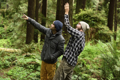 Research scientist Anthony Ambrose points out salient features of the trees to Chris Sharma in Eureka, CA, USA on 20 May, 2015.