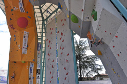 IFSC World Youth Championships - Lead Finals
