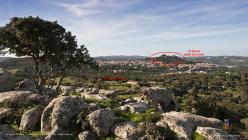 Bosco delle Tre Cime at Luogosanto, Sardinia
