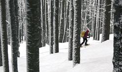 Racchette da neve in Friuli