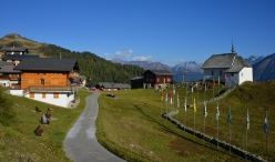 Aletsch Arena: Bettmeralp