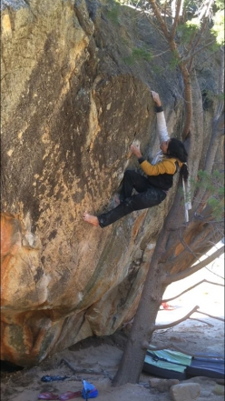 French climber Charles Albert repeating Fred Nicole's 'Monkey Wedding' 8C at Rocklands, South Africa