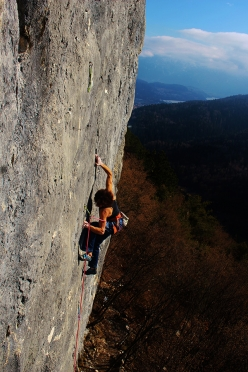 Peter Moser climbing 'Progetto Bassi' at Celva (TN)