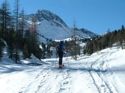 Ski mountaineering in Val Senales: Val di Pinalto