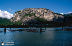 The cliffs of the Stawamus Chief, near Squamish, British Columbia, Canada.