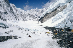Everest Camp 2, South Face